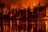 В Югре за сутки потушили четыре лесных пожара