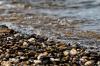 На реке Лебедь в Республике Алтай произошла трагедия