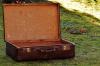 В лесу недалеко от Бердска обнаружено тело женщины под чемоданом