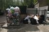 «Опора России» предлагает конфисковывать транспорт у виновников свалок