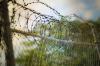 Появилось видео жестоких пыток заключенного в колонии Ярославля