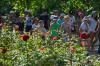 Бердников проверил, как отдыхают дети и ремонтируются дворы