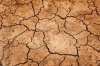 Киев пугает украинцев кадрами страшной засухи в Крыму