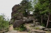 Красноярский заповедник «Столбы» закрыли для посещения из-за медведей