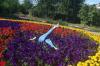 Жительницу Челябинской области затравили за фото на цветочной клумбе