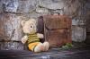 Детский портфель вызвал переполох в Петрозаводске