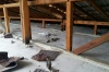 В Приангарье иностранный рабочий сорвался с крыши школы