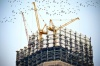 Инвестор достроит в Краснодаре проблемный ЖК «Рич-Хаус»