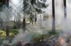 Более 100 человек тушат пожар в Крымском заповеднике