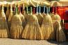 Пожилой астраханец получил срок за изготовление веников из конопли