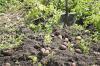 В Башкирии трое мужчин насмерть угорели в погребе