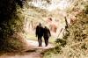Жители Тюмени исполняют мечты пожилых людей