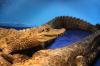 Знай наших! Датский турист прокатился на австралийском крокодиле