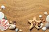 Морское чудовище, найденное на пляже в США, оказалось куклой из папье-маше