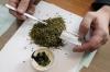 В правительстве Грузии посчитали, сколько страна заработает на продаже марихуаны
