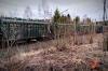 В Приангарье 12 вагонов грузового поезда сошли с рельсов. СК начал проверку