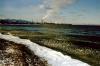 Медведев потребовал разобраться с ликвидацией отходов Байкальского ЦБК
