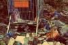 Суд и прокуратура заставили «Тюменскую домостроительную компанию» собирать бутылки