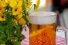 Пиво может остановить рак, выяснили ученые
