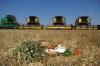 Роман Куринный: наша задача – создать комфортные условия для фермеров