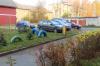 Петрозаводчанин посадил клены во дворе, но соседи их выкопали под парковку