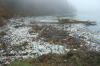 Прокуратура заинтересовалась информацией о загрязнении реки Кундат в Кузбассе