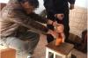 В Приангарье отец жестоко наказал маленького сына за то, что тот «обкакался»