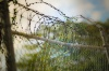 Из колонии-поселения в Волгограде сбежали двое осужденных