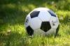 «Молодежка ОНФ» запускает футбольную акцию в России