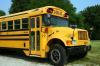 В Севастополе увеличится количество школьных автобусов