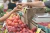 Власти Севастополя рассказали, сколько платят предприниматели за место на рынке
