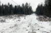 Власти Петрозаводска выдали инвалидам и многодетным участки посреди леса