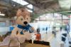 Более 50 гостиниц примут гостей красноярской Универсиады