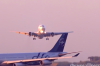 На месте крушения самолета, на котором летел известный футболист, нашли труп