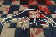 «Кубанское гостеприимство»: кто и как избивает активистов