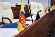 Ионину и Газзаеву предложили возглавить список эсеров на выборах в Екатеринбурге