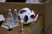 Думский прогноз. Депутаты Госдумы рассказали, чего ждут от сборной России по футболу