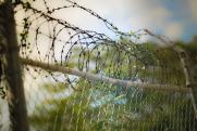 Замглавы ФСИН извинился перед заключенным, которого пытали в Ярославле