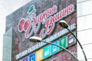 Поможет в расследовании: бизнесмены и родные погибших в «Зимней вишне» выступили против ее сноса