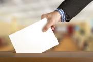 Руководитель облизбиркома проголосовала на выборах губернатора Нижегородской области