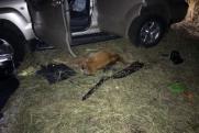 В Курганской области полицейский погиб во время незаконной охоты