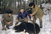 «Чушь, что медведя загнали собаками в берлогу, чтобы убить из безопасности»