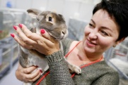 В Краснодаре открылась главная животноводческая выставка Юга России