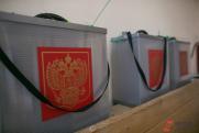 В Хакасию приехали представители Центризбиркома для наблюдения за выборами