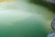 Опасное наследие. Зеленый водоем рядом с комбинатом УГМК несет угрозу онкозаболеваний