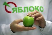 «Кубанское «Яблоко» продолжает идти по пути самоуничтожения»