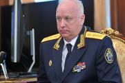 Перед заседанием по делу Арашукова СК опроверг личное знакомство Бастрыкина с сенатором