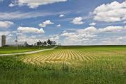 Забайкалье начинает подготовку к выдаче дальневосточных гектаров