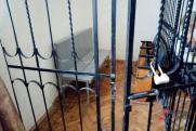 Подозреваемого в изнасиловании воспитанников челябинского интерната отпустили домой