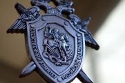 Нижегородских чиновников заподозрили в неправомерном берегоукреплении Волги за счет бюджета
